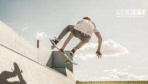 Curious Skateshop